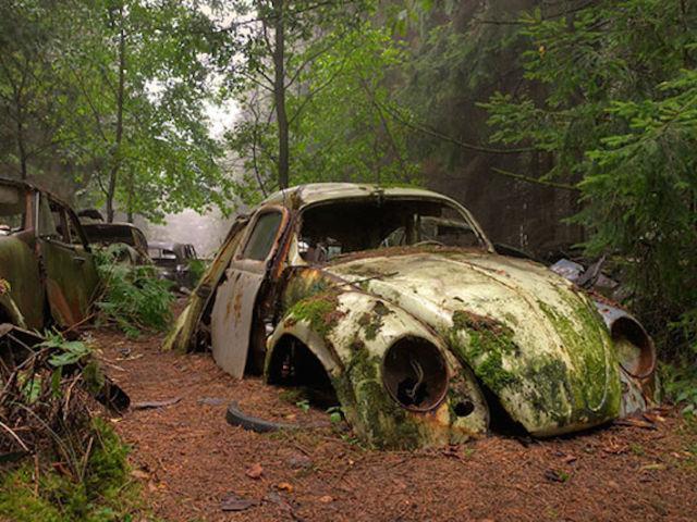 chatillon car graveyard abandoned cars cemetery belgium 11 thegem blog justified - HOME - JUNK CARS
