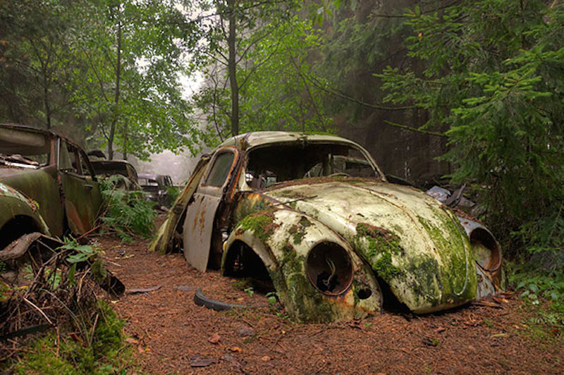 chatillon car graveyard abandoned cars cemetery belgium 11 - Need A Reliable Towing Service?